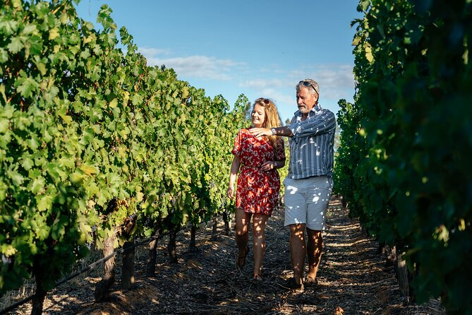Multilingual Cape Town Wine Lands Private Day Trip