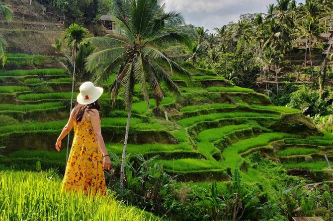 Private Tour - Ubud Spectacular Sightseeing