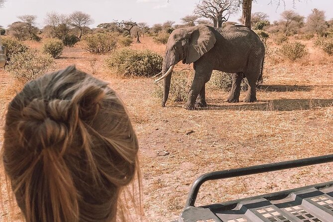 9Days 8 Nights Southen Lodge Safari special for girls group