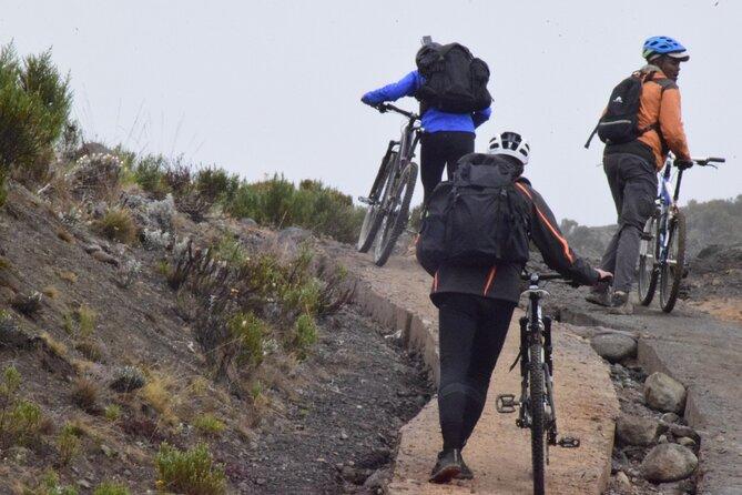 Bike Tour Summit On Kilimanjaro For Charity