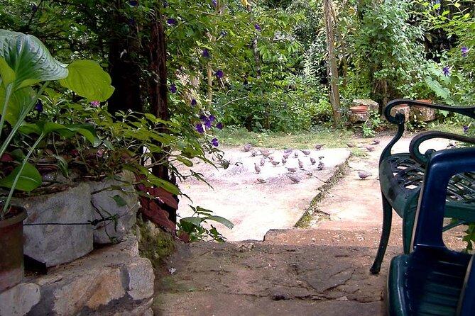 Rockland Bird Sanctuary plus Shopping Private Tour