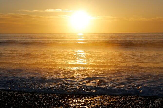 Kapiti Coast and Foxton Area Beaches Day Tour