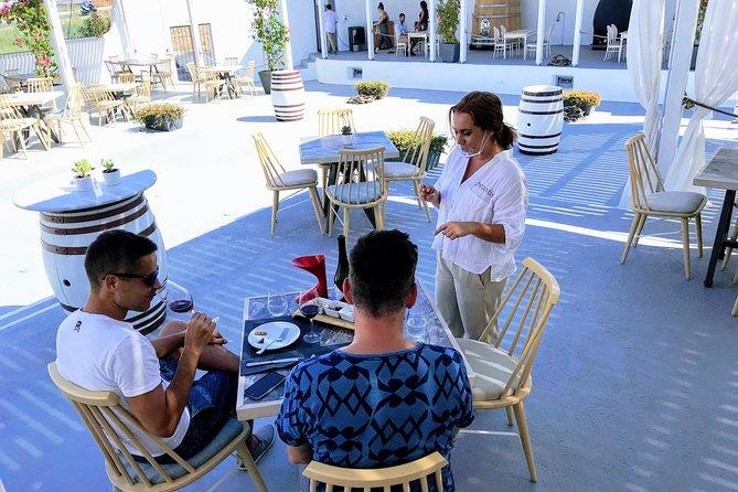 Discover Santorini Wine & Tasting Tour Experience
