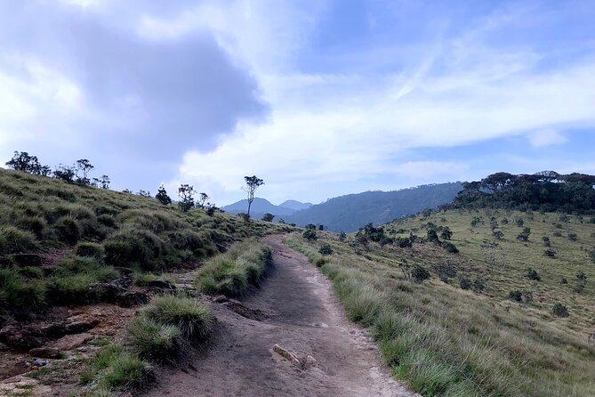 Day excursion to Horton Plains with scenic train ride from Nuwara Eliya