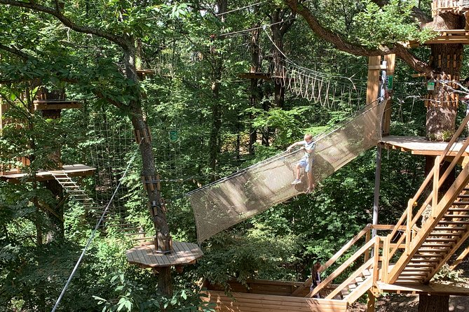 Tree Top Adventure in Forest of Meudon