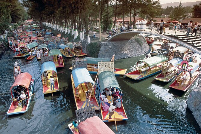 Private Tour: Xochimilco Coyoacan and Frida Kahlo's Museum and house