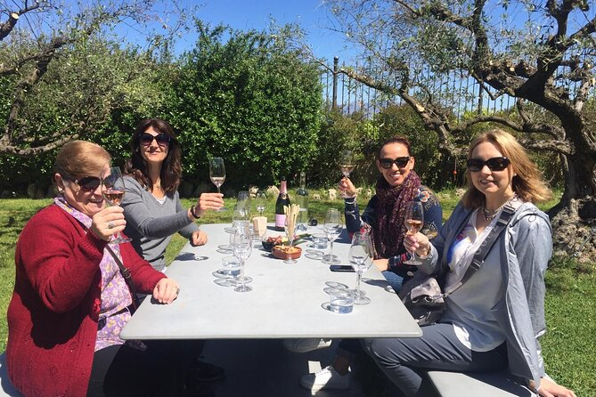 Penedes and Cava Winery Small Group Tour