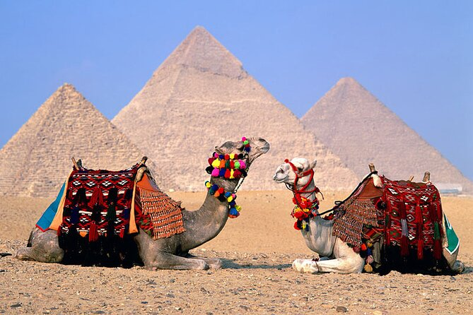 Private Tour of the Pyramids, Sphinx,Egyptian Museum With Camel Ride From Cairo