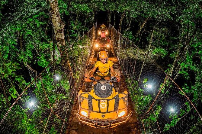 Jungle Night from Cancun