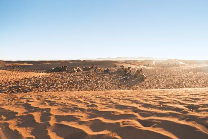 Desert Tour from Fes to Marrakech through the Sahara