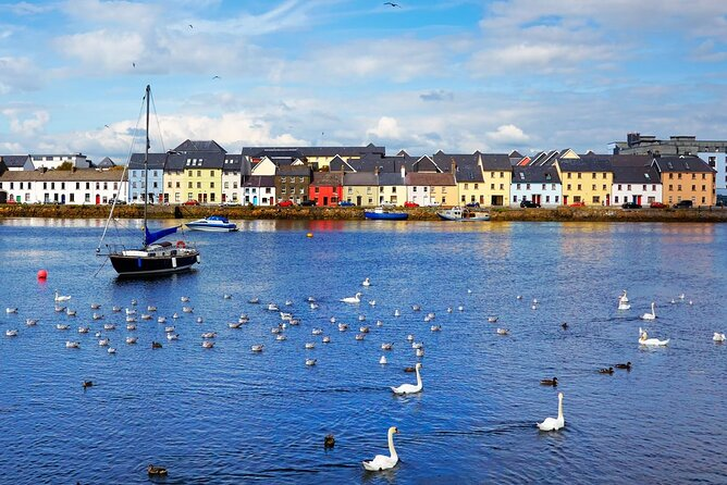 Galway Top Highlights & Claddagh Village Walking Tour