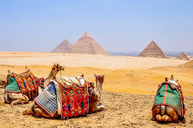 8-Hour Private Tour of the Pyramids, Sphinx,Egyptian Museum including Camel Ride