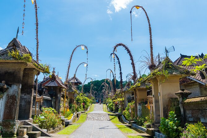 Private Experience: Bali Village Tour