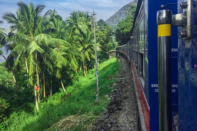 Highlights of Sri Lanka by Train (12)