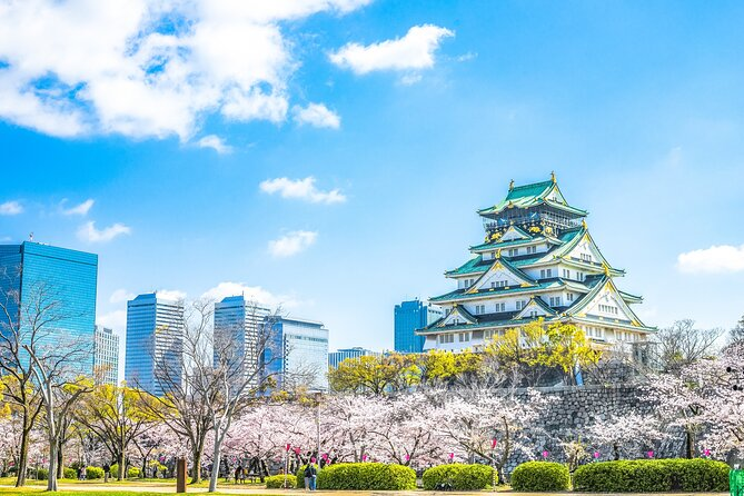 Private Tour - This is The Best Walking Tour, All Must-sees in Osaka!