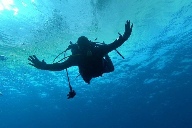 Scuba Diving Course OWD