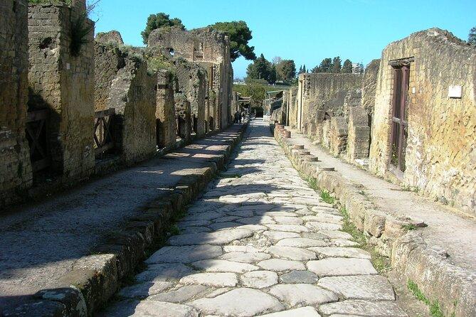 Pompeii, Herculaneum And Mount Vesuvio Private Tour From Naples