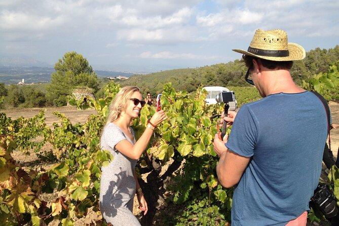 Private wine tasting & E-bike Barcelona's coastline Small Group tour