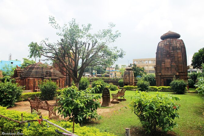 Best of Bhubaneswar (Guided Halfday Sightseeing Tour by Car)