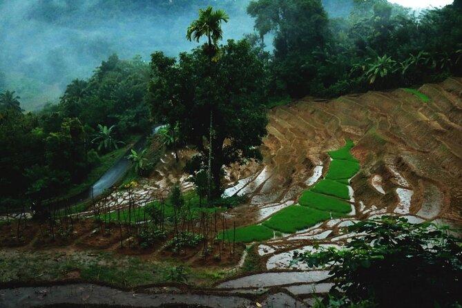 Heeloya Village Guided Hike via Rangala
