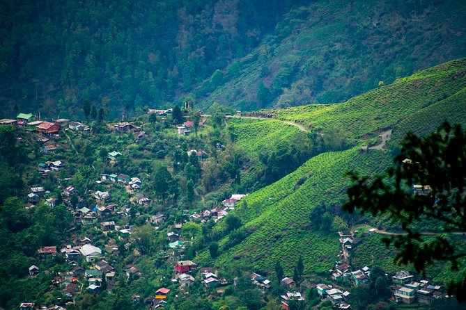 Tourisct Highlights of Darjeeling (Guided Fullday Sightseeing Tour by Car)