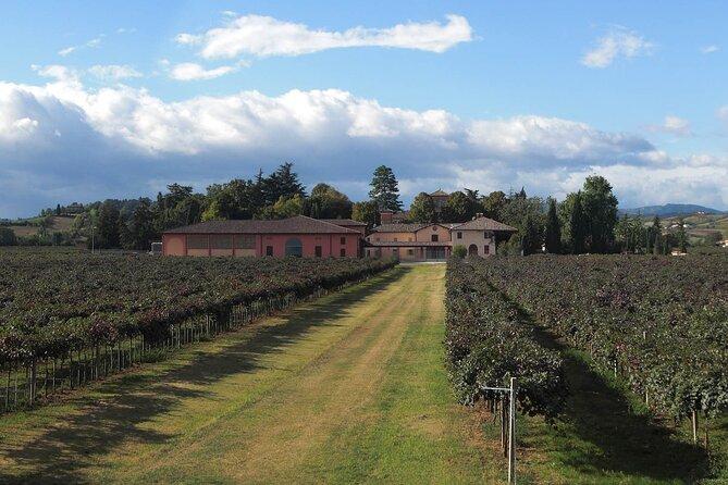 Visit and wine tasting at Cleto Chiarli