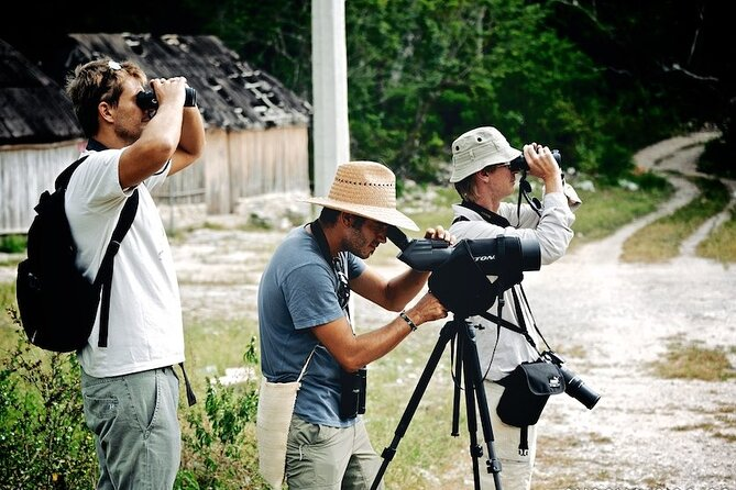 Birdwatching in Sian Ka´an and Muyil Archaeological Site from Tulum
