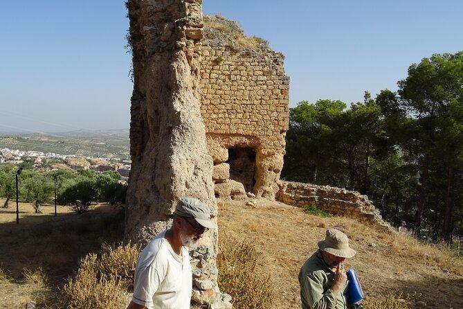 Walk to Jaen's castle & views