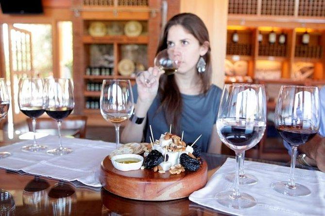 Premium Wine Tasting in Santiago De Chile
