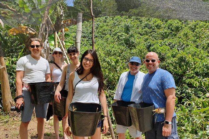 Full-Day Private Guatape Coffee Villa Tour from Medellin