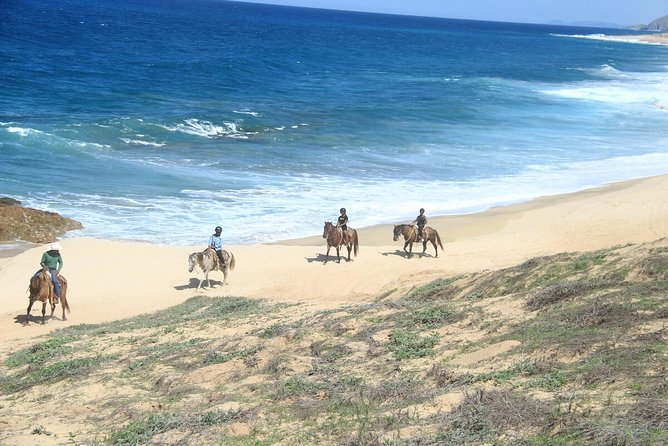 Beach and Desert Horse Back Riding Experience