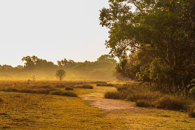 Day Trip to Sundarbans (Guided Private Sightseeing Experience from Kolkata)