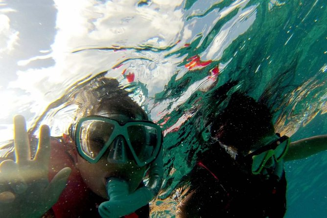 Snorkel trip + natural pool Bávaro
