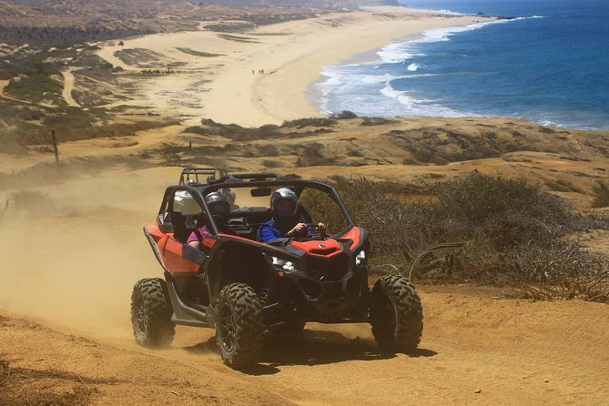 Small-Group Buggy Adventure with Driver in Los Cabos
