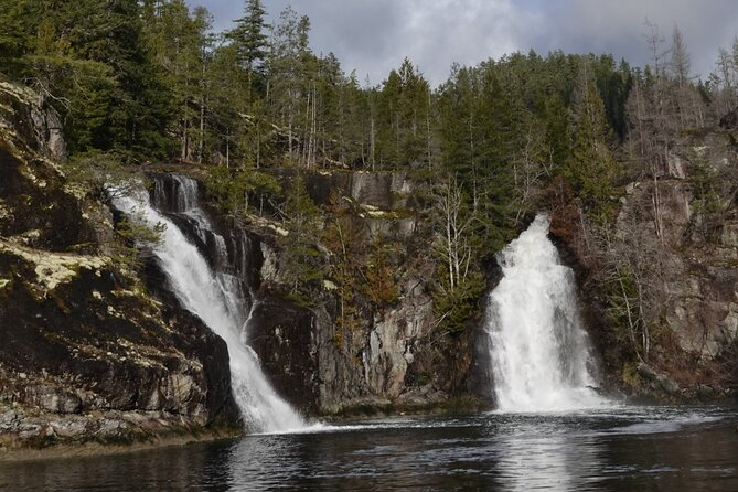Spring Bear and Waterfall Tour
