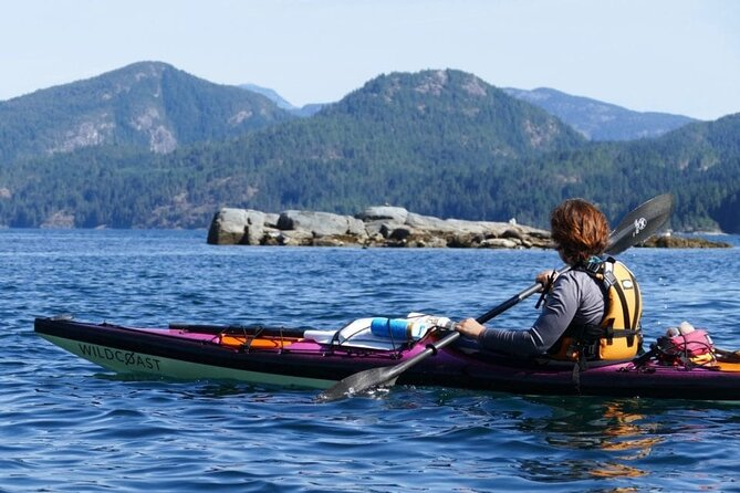Kayaking with Whales and Wildlife