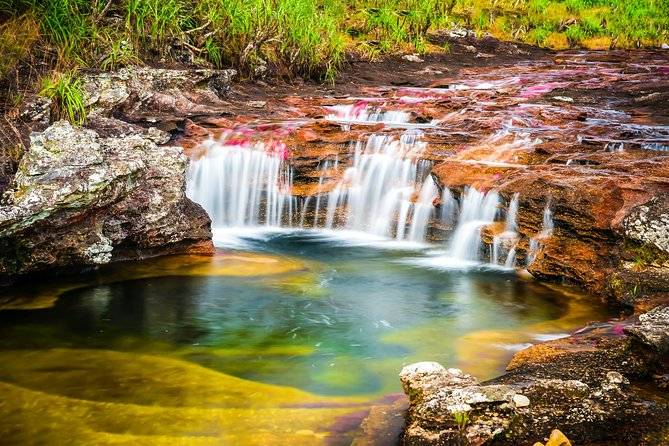 3-Day Trip to Caño Cristales (the River of Many Colors)