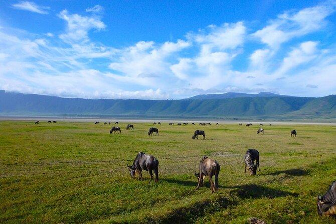 4 Days(Tarangire, Serengeti & Ngorongoro)Lodge Safari