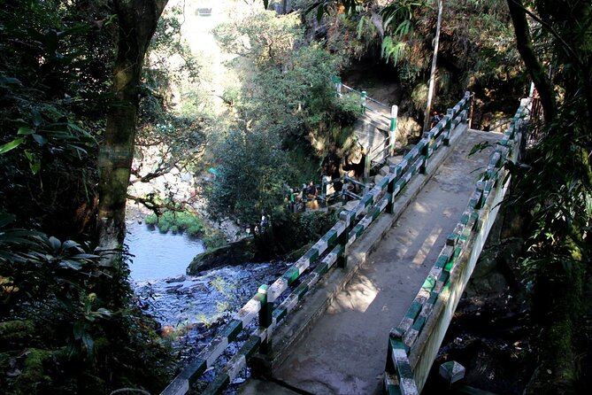 Shillong Nature Walk (3 Hours Guided Trekking Experience)