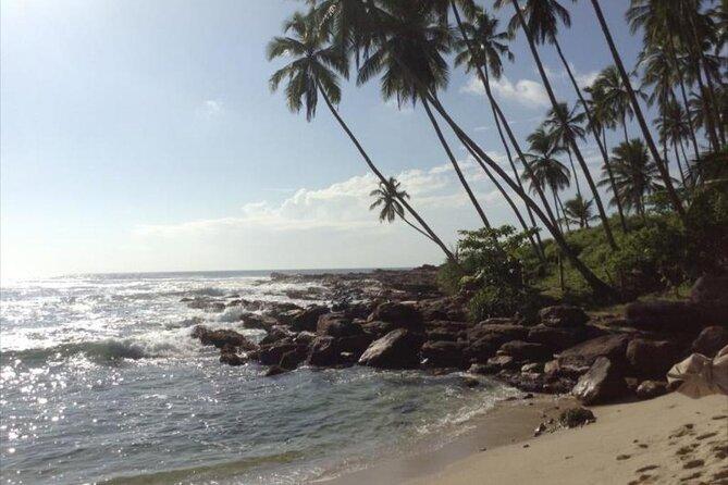 Ceylon Beach & Safari Experience