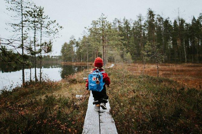 Auttiköngäs & Korouoma Waterfalls Summer Hiking Trails