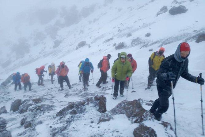 Machame route 6 days Kilimanjaro trekking Adventures Gap Year