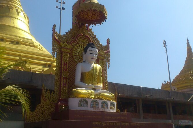 Excursion - Pagoda,Kanheri Caves & SG National Park