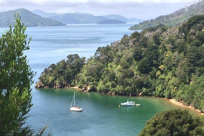South Island Road Trip Delights: Custom Multi-Day 4D : 3N