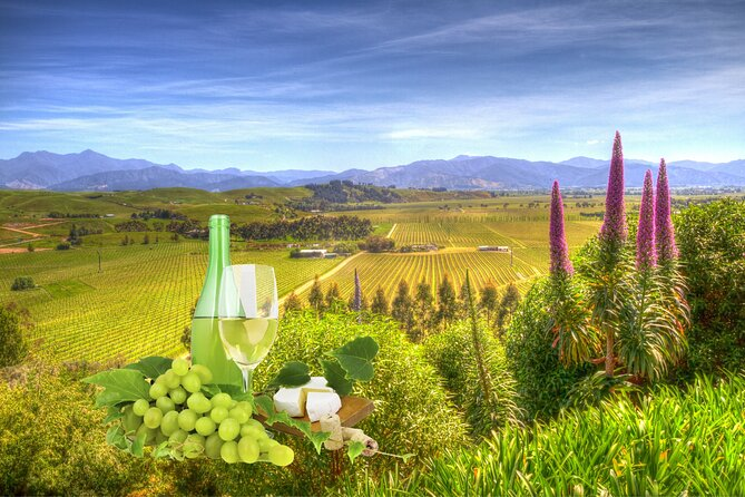 Winter Wine and Scenic Private Delights Tour of Blenheim