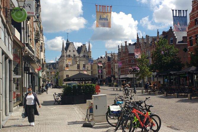 Vegan Walking Food Tour in Mechelen