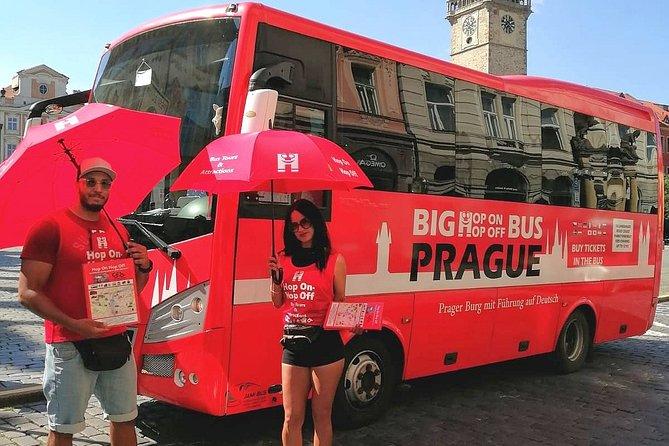 Hop On Hop Off Bus Tour (24 Hour Ticket)