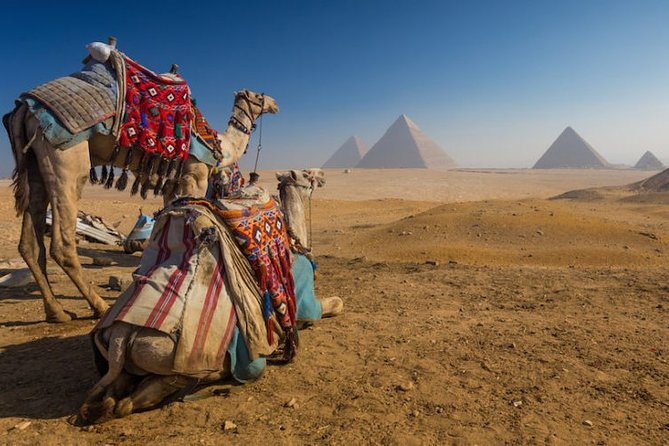 Day Tour To Cairo From Luxor By Plane,Tours,Sailing Felucca&Camel Ride