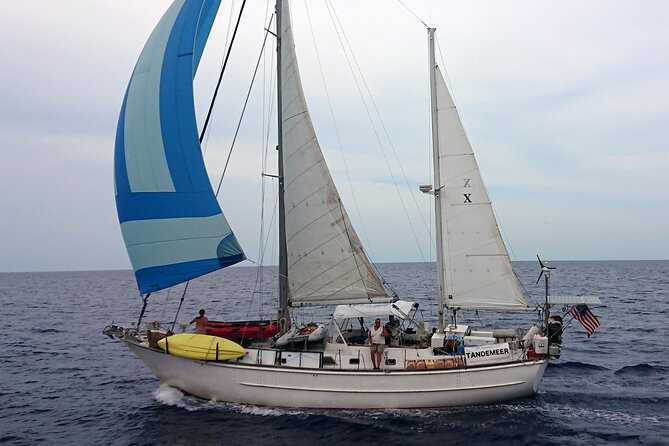 4 Hour Sailing Tour of Vineyard Haven Harbor and Sound