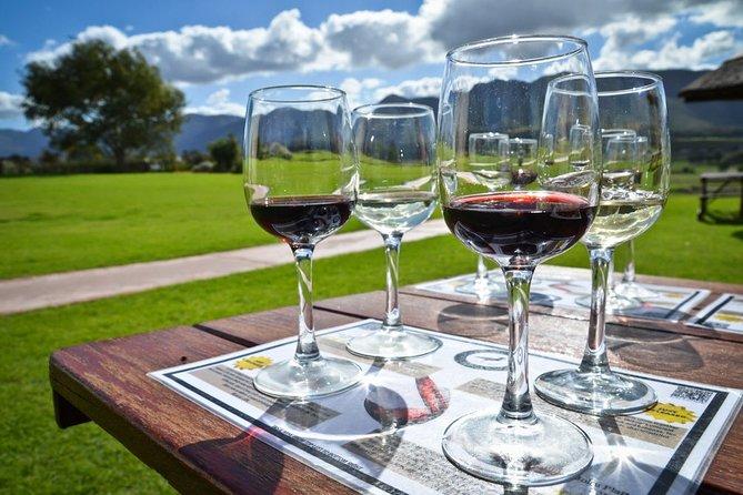 Full day Cape Winelands ( Stellenbosch and Franschoek )